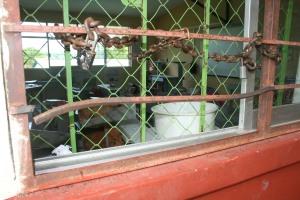 Felipa Martínez Hernández, afanadora de esa escuela, explicó que al llegar alrededor de las 07:00 horas, se dio cuenta que en un salón de sexto grado, habían sido violados los barrotes de seguridad y al entrar se dio cuenta que el equipo de computo de eciclomedia ya no estaba.